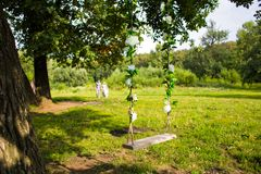 Free Swing On A Tree Royalty Free Stock Photography - 57076387
