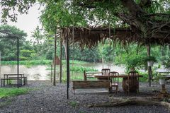 Swing on the riverside under the big trees look fresh. Stock Image