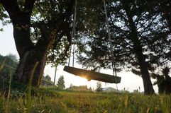 Swing at Sunset. A swing under an apple tree on a farm at sunset Stock Image