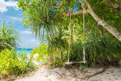 Swing with tree blue sky and clouds background, blue sea and white sand beach on Similan island, Stock Image