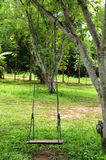 Swing On Tree Royalty Free Stock Photos