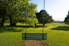 Swing on a tree ireland. Swing on a tree in a grass field ireland Stock Photo