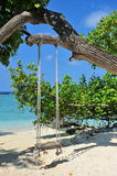 A swing on a tropical beach Stock Photos