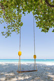 Swing under a tree on the beach. Close to the sea, sunny weather Royalty Free Stock Photo