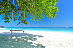 Swing On White Beach With Blue Ocean and Blue Sky. Swing On Tree and White Beach With Blue Ocean Stock Photos