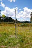 Swingball Stock Image