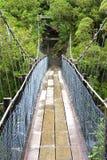 Swingbridge at Hokitika gorge Stock Image