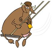 Swinging Beef royalty free illustration