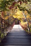 The Swinging Bridge. A swinging bridge spans into the sunlight Royalty Free Stock Photo