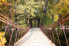 Swinging Bridge. A swinging bridge in the Autumn of the year Stock Photography
