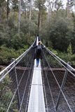 Huon river in Tasmania. A swinging bridge across the Huon river in Tasmania Stock Photos