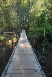 Swinging Bridge Royalty Free Stock Image