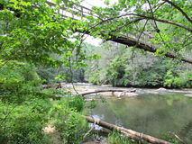 Swinging Bridge Crossing the Toccoa River Royalty Free Stock Photo