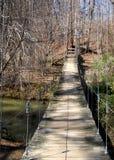 Swinging bridge Royalty Free Stock Image