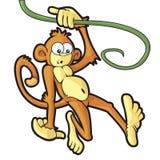 Swinging Monkey Royalty Free Stock Photos