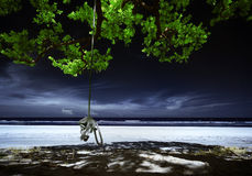 Swinging rope. Infrared edited images of rope and tree royalty free stock photography