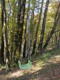 Swings in autumn forest. Children swings among trees in autumn forest Stock Photos