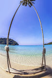 Swings and palm on the sand tropical beach. Royalty Free Stock Images