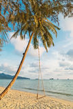 Swings and palm on the sand tropical beach. Royalty Free Stock Photography