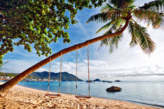 Swings on the tropical beach. Royalty Free Stock Photos