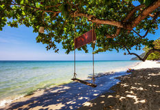 Swings at tropical beach. Stock Images