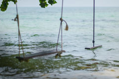 Swings under a tree by the sea Royalty Free Stock Image
