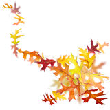 Swirl of autumn leaves Royalty Free Stock Photography