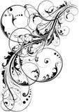 Swirl floral element Stock Photos