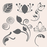 Swirl and floral  elements in various styles Royalty Free Stock Image