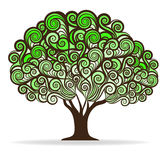 Swirl green tree Stock Images