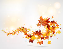 Swirl of leaves. Swirl of autumn leaves with lights Stock Images