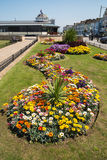 Swirl of a pretty flowerbed in Herne Bay, Kent, UK Royalty Free Stock Images