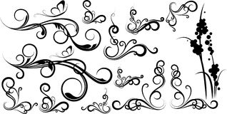Swirl Spring Organic Flourish Elements Royalty Free Stock Photos