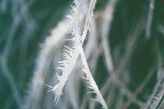 swirley bokeh ice crystal Stock Image