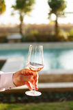 Swirling glass of rose wine at wine tasting. Concept of rose win. Swirling glass of rose wine at outdoor wine tasting. Concept of rose wine. Vertical stock images