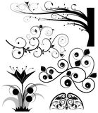 Swirling graphic elements vector Royalty Free Stock Photo