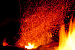 Swirling sparks. Embers in a fire glow and swirl upward Royalty Free Stock Photography