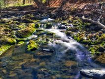 Swirling Stream into a tiny pond Stock Image