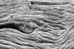 Swirling weathered wood grain Royalty Free Stock Photo