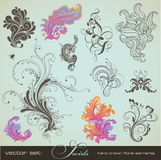 Swirls. Set - variety of handdrawn floral design elements in different styles Royalty Free Stock Photo