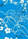 Swirls. Elegant blue and white flower swirls Royalty Free Stock Images