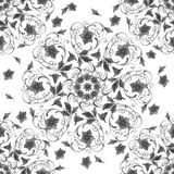 Floral swirl pattern seamless Royalty Free Stock Image