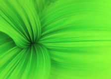 Swirls of green. Fresh green leaf, selective focus on the center, edges softened with zoom blur Royalty Free Stock Photo