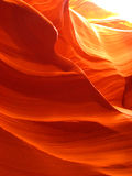 Swirls of Orange Stock Photography