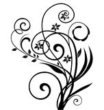 Swirly花卉设计 免版税库存图片
