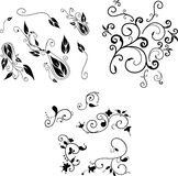 Swirly flourish decoration elements Stock Photography