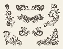 Swirly line curl patterns Royalty Free Stock Images