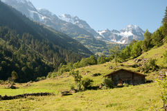 Swiss Alps Royalty Free Stock Image