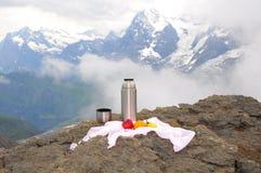 Swiss Alps. Royalty Free Stock Photo