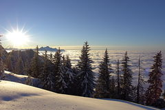 Swiss Alps_5. Where the air is so pure, the sky so clear, all around so quiet, the senses so enchanted Stock Photography